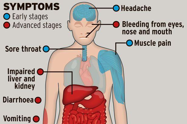 Ebola-outbreak-graphic